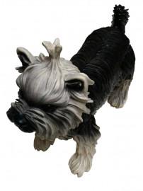 Manequim Pet Cachorro Lhasa