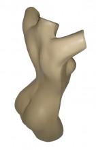 Busto Claudia Raia feminino Pele